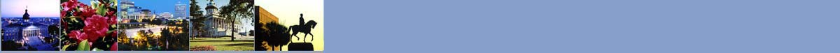 standard_banner